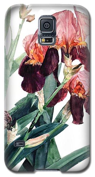 Watercolor Of A Pink And Maroon Tall Bearded Iris I Call Iris La Forza Del Destino Galaxy S5 Case
