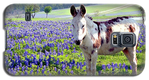 Jesus Donkey In Bluebonnets Galaxy S5 Case