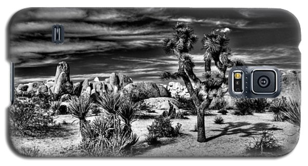 Galaxy S5 Case featuring the photograph Joshua Tree Black And White by Benjamin Yeager