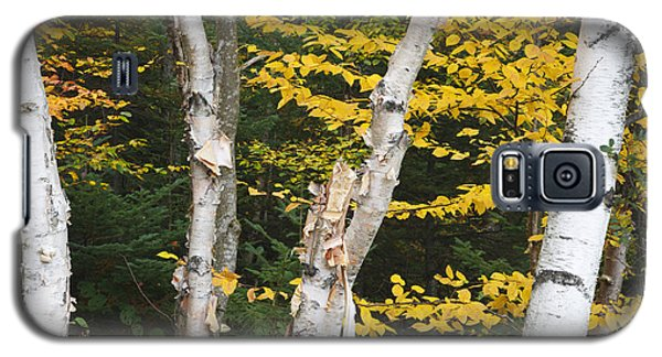 Kancamagus Highway - White Mountains New Hampshire Galaxy S5 Case