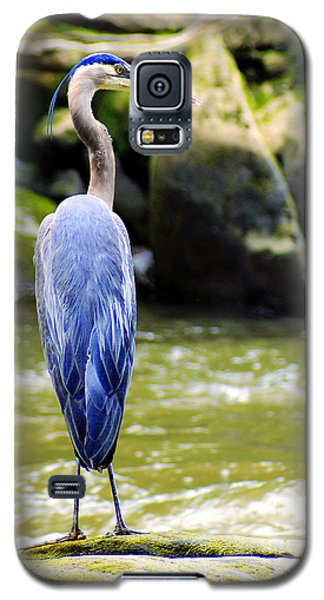 Keeping Watch Galaxy S5 Case