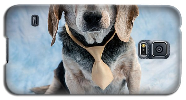 Kippy Beagle Senior And Best Dog Ever Galaxy S5 Case by Iris Richardson