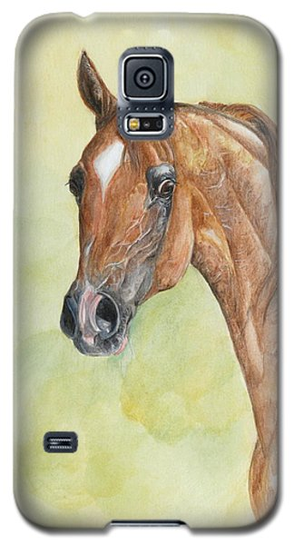 Galaxy S5 Case featuring the painting Kwestura by Janina  Suuronen