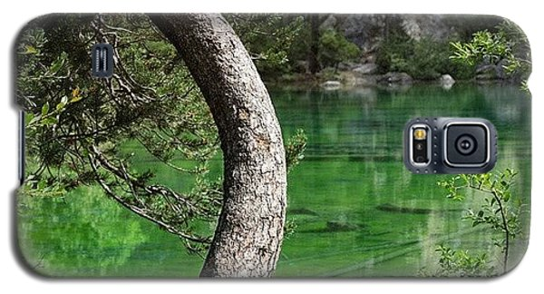 Cause Galaxy S5 Case - Lago Verde by A Rey