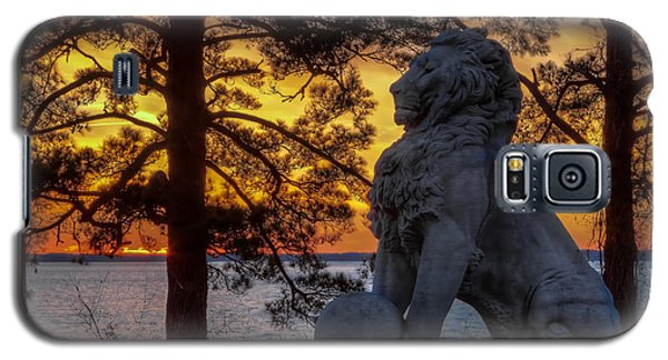 Lion At Sunset Galaxy S5 Case