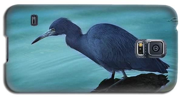 Little Blue Heron Galaxy S5 Case