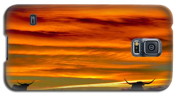 Longhorn Sunset Galaxy S5 Case