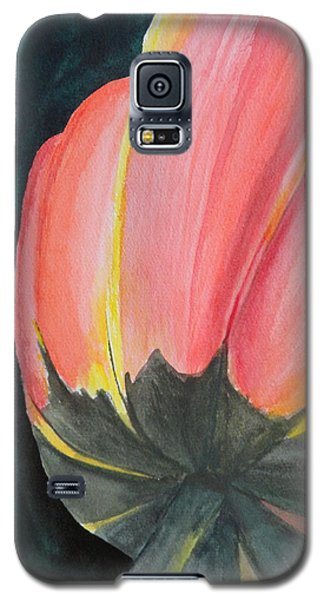 Galaxy S5 Case featuring the painting Looking Up by Betty-Anne McDonald