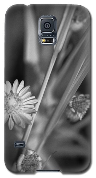 Galaxy S5 Case featuring the photograph Loxahatchee Flower by Bradley R Youngberg