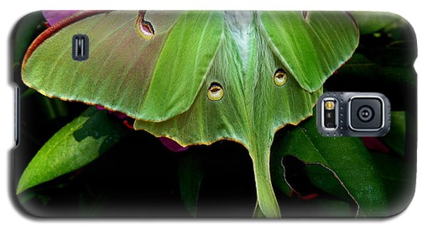 Lady Luna Moth Galaxy S5 Case