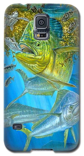 Mahi Mahi Hunting In Sargassum Galaxy S5 Case