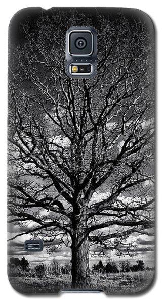 Marion Oaks Galaxy S5 Case
