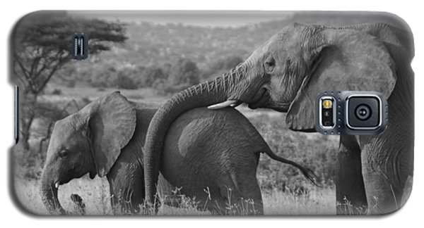 Maternal Love Galaxy S5 Case