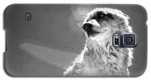 Galaxy S5 Case featuring the photograph Medicine Wolf by Deborah Moen