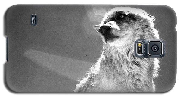 Medicine Wolf Galaxy S5 Case