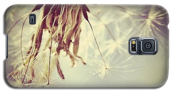 Sky Galaxy S5 Case - #mgmarts #dandelion #makeawish #wish by Marianna Mills