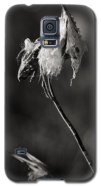 Milkweed Pod Galaxy S5 Case