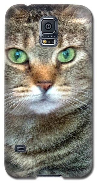 Missy 4  Galaxy S5 Case