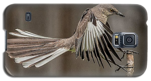 Mockingbird  Galaxy S5 Case by Rick Barnard