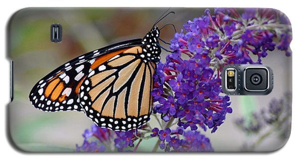 Monarch Galaxy S5 Case