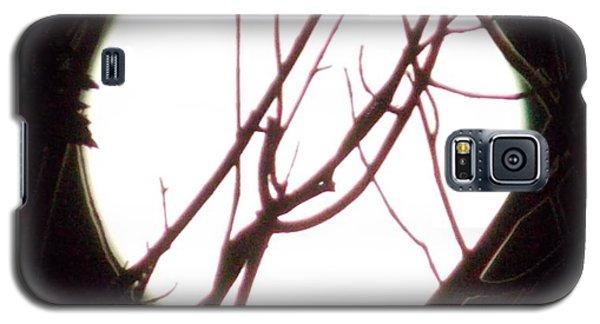 Moonshine 5 Galaxy S5 Case