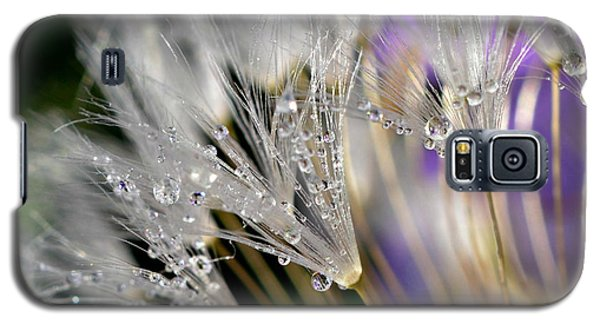 Morning Dew Galaxy S5 Case by Lila Fisher-Wenzel