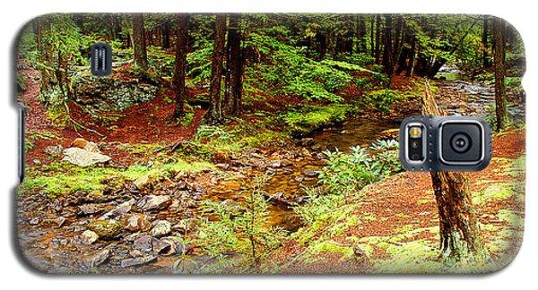 Mountain Stream With Hemlock Tree Stump Galaxy S5 Case by A Gurmankin