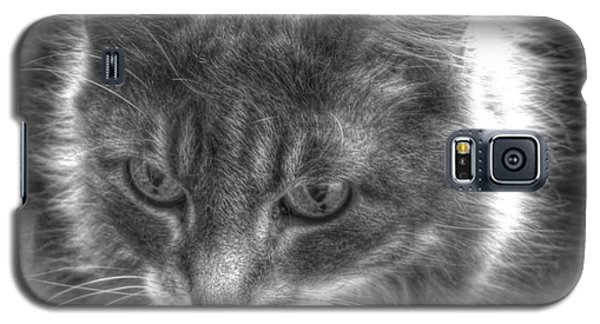 My Cat Galaxy S5 Case by Yury Bashkin