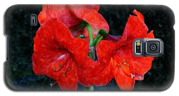 Naked Belladonna Galaxy S5 Case