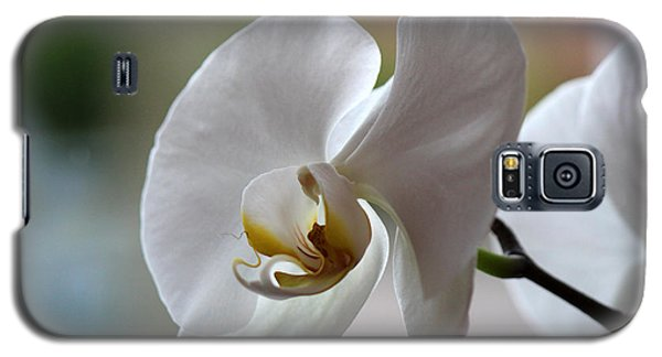 Galaxy S5 Case featuring the photograph Natural Beauty by Silke Brubaker