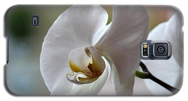 Natural Beauty Galaxy S5 Case by Silke Brubaker