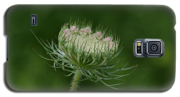 Galaxy S5 Case featuring the photograph New Beginning by Neal Eslinger