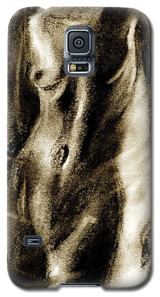Nude Galaxy S5 Case