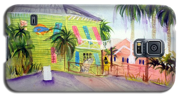 Old Key Lime House Galaxy S5 Case by Donna Walsh