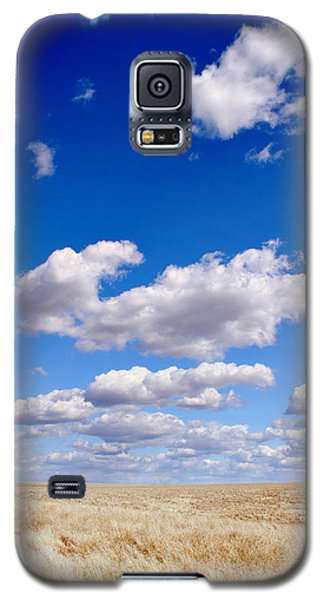 Openness Galaxy S5 Case by Kjirsten Collier