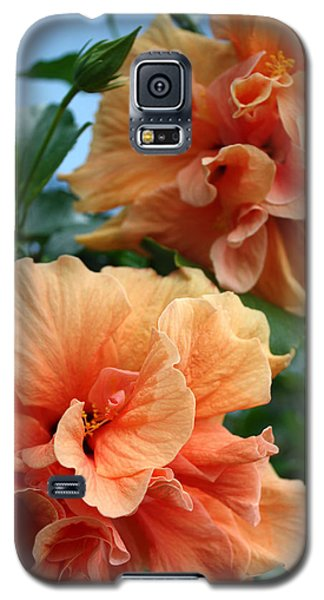 Orange Hibiscus Pair Galaxy S5 Case by Karen Nicholson