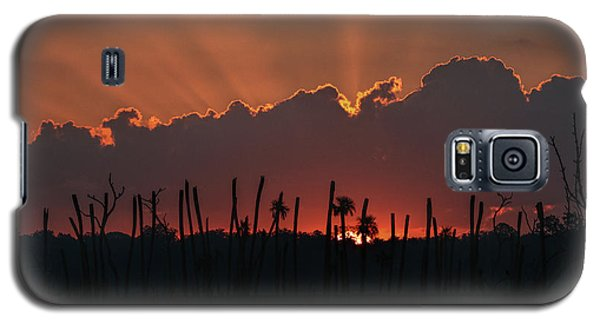 Orlando Wetlands Sunrise Galaxy S5 Case by Dorothy Cunningham