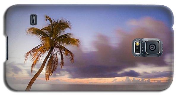 Palm Galaxy S5 Case by Scott Meyer