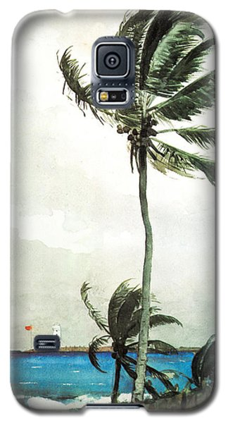 Palm Tree Nassau Galaxy S5 Case