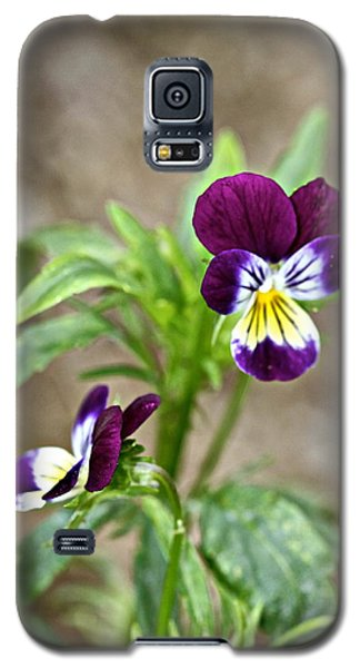 Galaxy S5 Case featuring the photograph Pansy by Michaela Preston