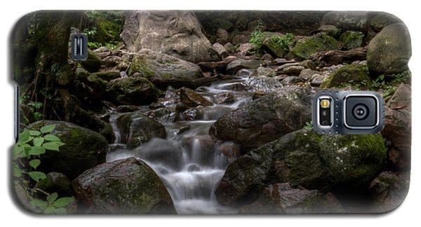 Parfrey's Glen Creek Galaxy S5 Case
