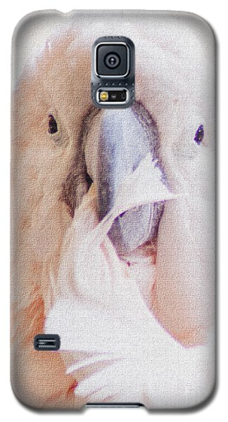 Galaxy S5 Case featuring the photograph Parrot Flair by Roselynne Broussard