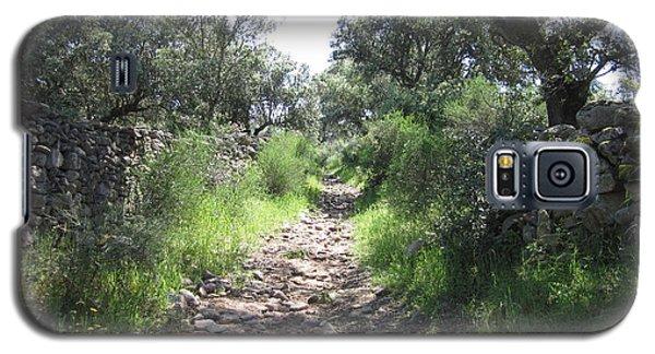 Path Near Almoharin Galaxy S5 Case