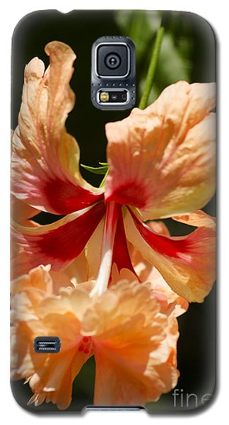 Peach And Red Flower Galaxy S5 Case