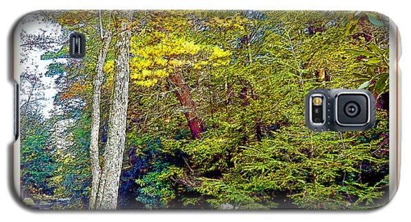 Galaxy S5 Case featuring the photograph Pennsylvania Mountain Stream In Autumn by A Gurmankin