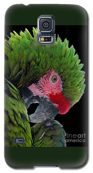 Pensive Parrot Galaxy S5 Case