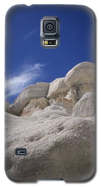 Galaxy S5 Case featuring the photograph Perched by Carlee Ojeda