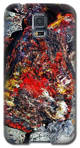 Petrified Wood Log Rainbow Crystalization At Petrified Forest National Park Galaxy S5 Case by Shawn O'Brien