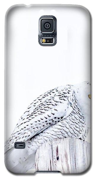 Piercing Eyes Galaxy S5 Case