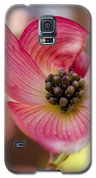Pink Dogwood Galaxy S5 Case